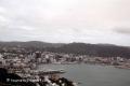 Wellington-190314-10